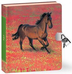 wild horse lock and key journal set