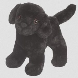 Abraham Black Lab