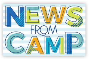News from Camp Postcards (Blue)