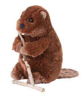 Buddy Beaver Stuffed Animal
