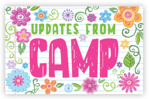 Updates from Camp Floral Postcards