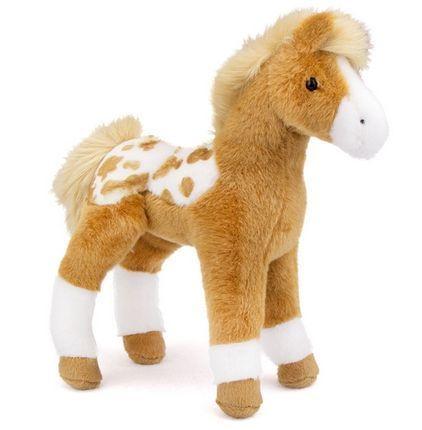 Freckles Appaloosa Foal
