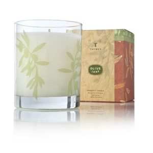 Olive Leaf Aromatic Candle