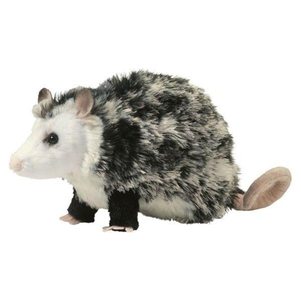 Oliver Possum