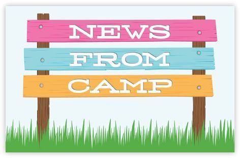 Pink News From Camp Postcard