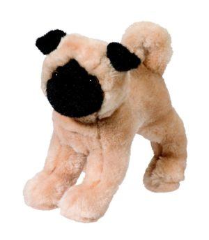 Punky Pug