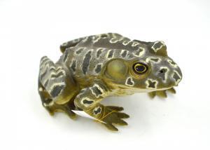 Mamejo Nature 9″ Bull Frog