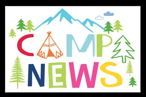 Forest Camp News Postcards